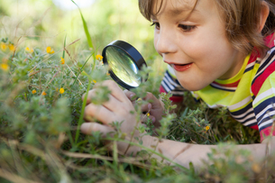 Happy little boy looking through magnifying glassの写真素材 [FYI00006517]