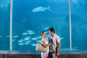 Happy couple beside the fish tankの写真素材 [FYI00006534]