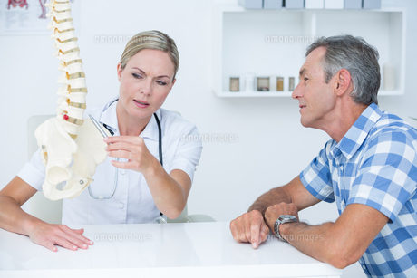 Doctor showing her patient a spine modelの写真素材 [FYI00006716]