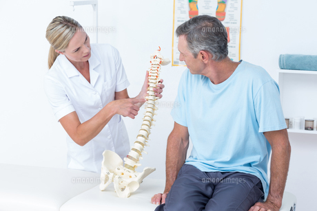 Doctor showing her patient a spine modelの写真素材 [FYI00006759]
