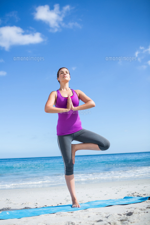 Brunette doing yoga on exercise matの素材 [FYI00006862]