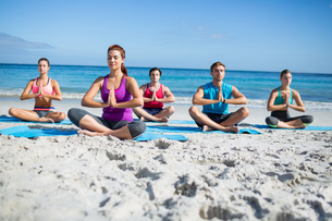 Friends doing yoga togetherの素材 [FYI00006869]