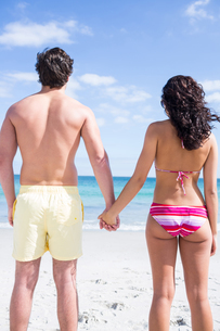 Happy couple holding hands and looking at the seaの写真素材 [FYI00006892]