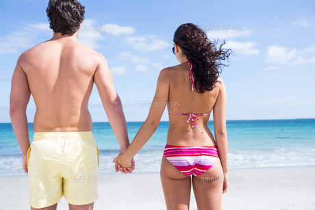 Happy couple holding hands and looking at the seaの写真素材 [FYI00006896]