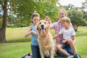 Happy family playing with their dogの素材 [FYI00007183]