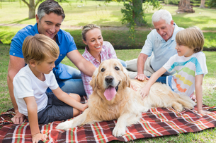 Happy family in the park with their dogの写真素材 [FYI00007209]