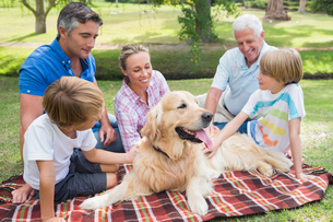Happy family in the park with their dogの写真素材 [FYI00007213]