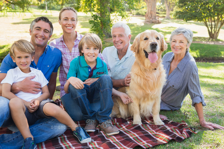 Happy family smiling at the camera with their dogの写真素材 [FYI00007216]