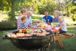 Happy family having picnic in the parkの写真素材 [FYI00007259]