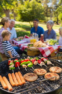 Family doing barbecue in the parkの写真素材 [FYI00007260]