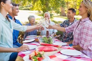 Happy family having picnic in the parkの写真素材 [FYI00007263]