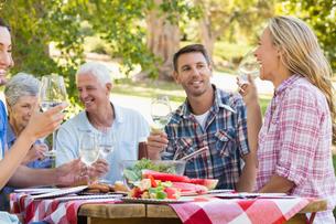 Happy family having picnic in the parkの写真素材 [FYI00007264]