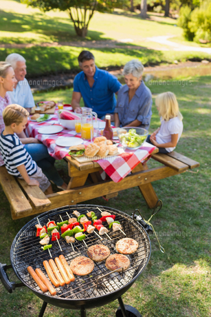 Happy family doing barbecue in the parkの写真素材 [FYI00007268]