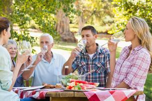 Happy family having picnic in the parkの写真素材 [FYI00007274]