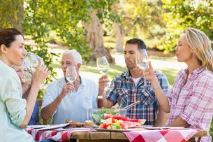 Happy family having picnic in the parkの写真素材 [FYI00007277]