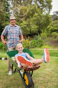 Happy grandfather and his granddaughter with a wheelbarrowの写真素材 [FYI00007375]
