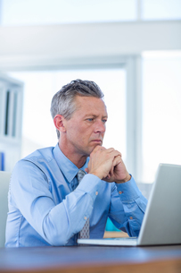 Concentrated businessman looking at laptop computerの写真素材 [FYI00007996]