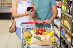 Smiling bright couple buying food products and using notebookの写真素材 [FYI00008791]