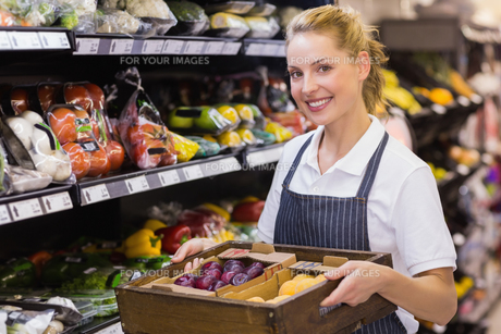 Portrait of a smiling blonde worker holding a box with vegetablesの写真素材 [FYI00008858]