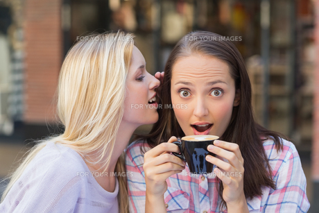 Blonde woman telling secret to her friend while drinking coffeeの素材 [FYI00009007]