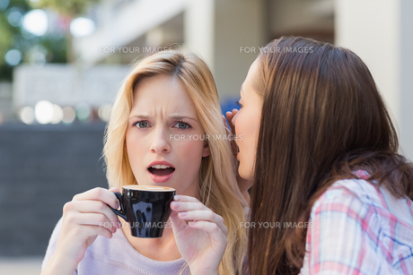Brunette telling secret to her friend while drinking coffeeの素材 [FYI00009010]