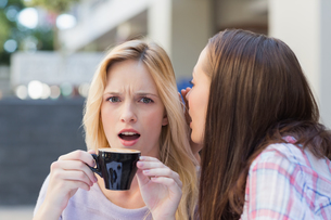Brunette telling secret to her friend while drinking coffeeの写真素材 [FYI00009010]