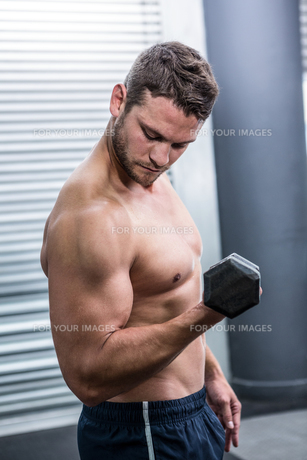 Muscular man lifting dumbbellsの写真素材 [FYI00009215]