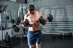 Concentrated muscular man lifting dumbbellsの写真素材 [FYI00009216]