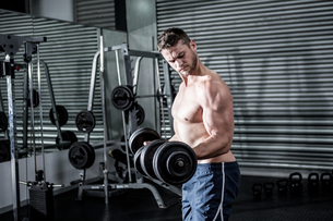Concentrated muscular man lifting dumbbellsの写真素材 [FYI00009218]