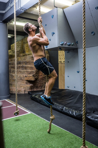 Side view of muscular man doing rope climbingの写真素材 [FYI00009224]