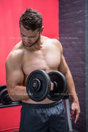 Muscular man lifting dumbbellの写真素材 [FYI00009242]