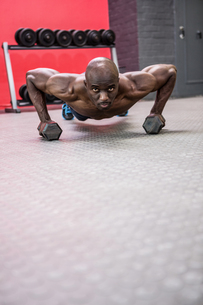 Portrait of muscular man doing push-ups with dumbbellsの素材 [FYI00009283]