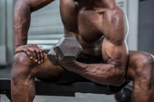 Young Bodybuilder doing weightliftingの写真素材 [FYI00009289]