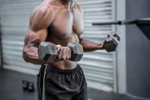 Young Bodybuilder doing weightliftingの写真素材 [FYI00009301]