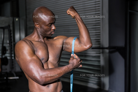 Young Bodybuilder measuring his musclesの写真素材 [FYI00009308]