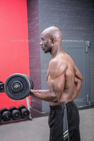 Young Bodybuilder doing weightliftingの写真素材 [FYI00009310]