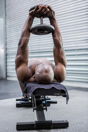 Young Bodybuilder doing weightliftingの写真素材 [FYI00009319]