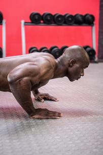 Young Bodybuilder doing push upsの写真素材 [FYI00009322]