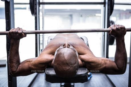 Young Bodybuilder doing weightliftingの写真素材 [FYI00009325]