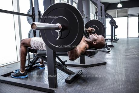 Young Bodybuilder doing weightliftingの写真素材 [FYI00009326]