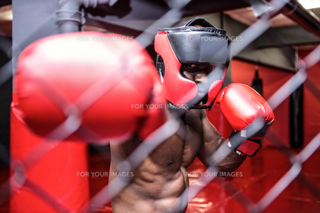Young bodybuilder with helmet standing behind an iron fenceの写真素材 [FYI00009335]