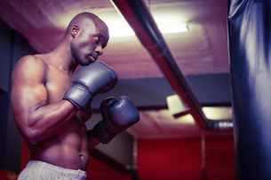 Young Bodybuilder standing in front of a boxingbagの写真素材 [FYI00009338]
