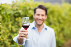 Young happy man smiling at camera and holding a glass of wineの写真素材 [FYI00009595]