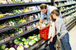 Happy family shopping vegetablesの写真素材 [FYI00009954]