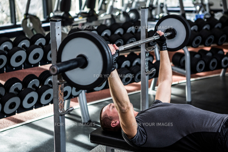 Muscular man lifting barebell while lying on benchの写真素材 [FYI00010150]