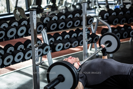 Muscular man lifting barebell while lying on benchの写真素材 [FYI00010153]