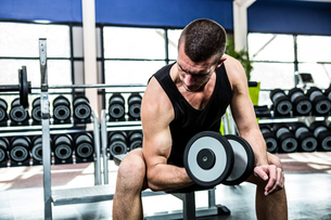 Muscular man exercising with dumbbellsの写真素材 [FYI00010160]