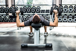 Muscular man lifting dumbbells while lying on benchの写真素材 [FYI00010162]