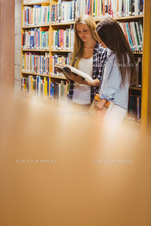 Pretty young students working together with bookの写真素材 [FYI00010310]