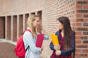 Smiling students talking outdoorの写真素材 [FYI00010341]